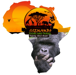 African wilderness tours